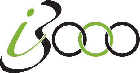 i3000